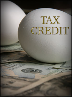Is your tax liability only comprised of premium tax credit? Skip late filing penalty to save money.